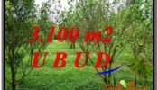 Exotic LAND IN UBUD FOR SALE TJUB593
