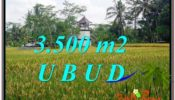 FOR SALE Exotic LAND IN Ubud Tegalalang BALI TJUB596
