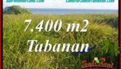 Beautiful PROPERTY LAND SALE IN TABANAN TJTB341