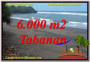 FOR SALE 6,000 m2 LAND IN TABANAN BALI TJTB345