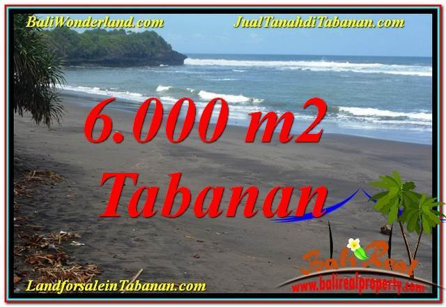 Beautiful PROPERTY 6,000 m2 LAND SALE IN TABANAN BALI TJTB345