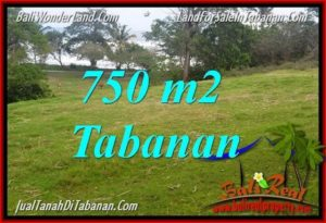 Exotic PROPERTY 750 m2 LAND FOR SALE IN Tabanan Selemadeg TJTB346