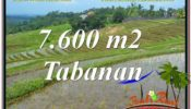 FOR SALE Affordable LAND IN TABANAN BALI TJTB347