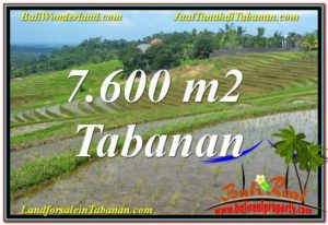 FOR SALE Magnificent PROPERTY LAND IN Tabanan Selemadeg TJTB347
