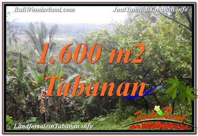 Exotic PROPERTY LAND IN Tabanan Selemadeg BALI FOR SALE TJTB348