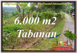 Affordable PROPERTY TABANAN 6,000 m2 LAND FOR SALE TJTB349