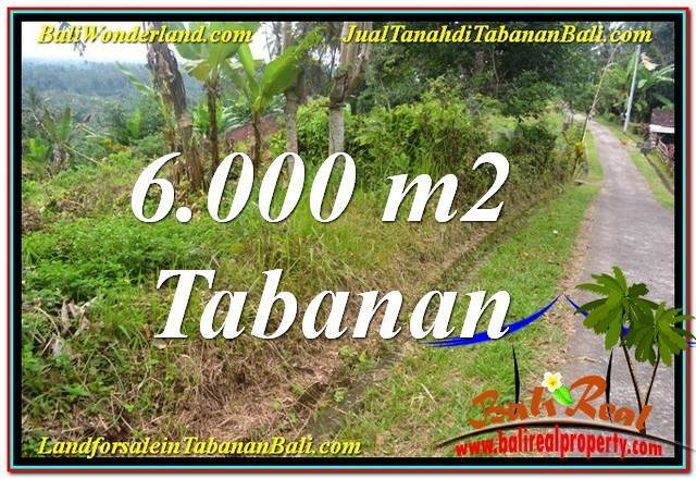 FOR SALE Affordable 6,000 m2 LAND IN Tabanan Selemadeg BALI TJTB349