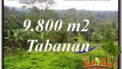FOR SALE 9,800 m2 LAND IN TABANAN BALI TJTB350