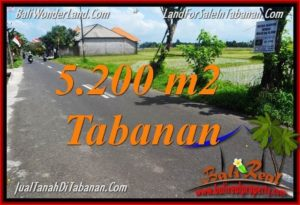 Magnificent PROPERTY 5,200 m2 LAND IN Tabanan Kediri FOR SALE TJTB351