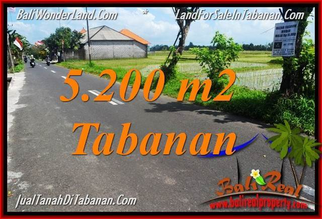Beautiful 5,200 m2 LAND SALE IN TABANAN BALI TJTB351
