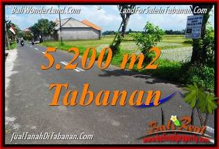 Magnificent PROPERTY LAND FOR SALE IN Tabanan Kediri BALI TJTB351