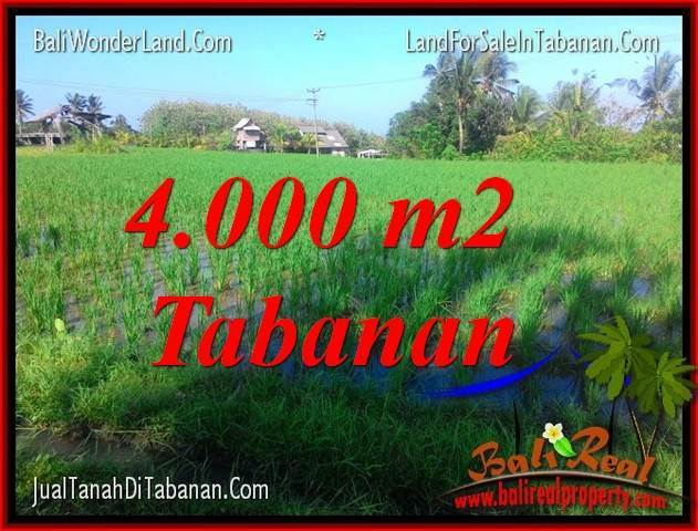Affordable PROPERTY Tabanan Selemadeg LAND FOR SALE TJTB352