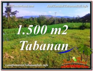 Affordable PROPERTY LAND SALE IN TABANAN TJTB353