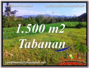 Affordable PROPERTY LAND SALE IN TABANAN TJTB353
