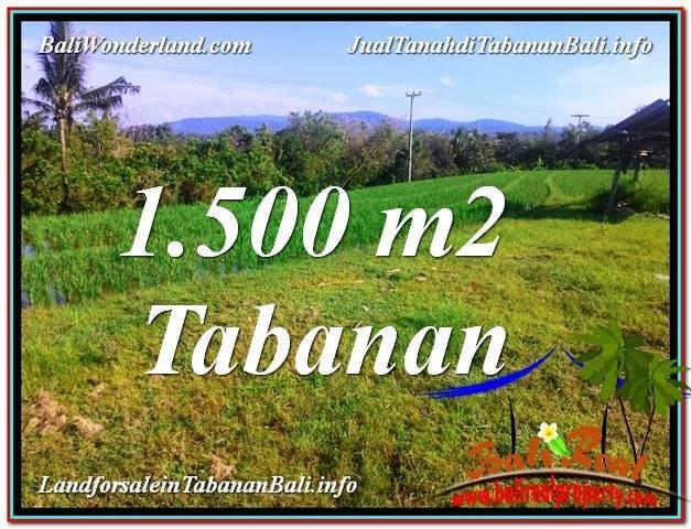 Affordable PROPERTY Tabanan Selemadeg BALI LAND FOR SALE TJTB353