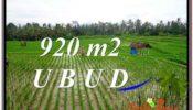 UBUD BALI 920 m2 LAND FOR SALE TJUB575