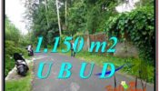 FOR SALE 1,150 m2 LAND IN UBUD TJUB576