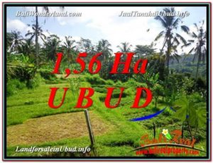 FOR SALE Exotic PROPERTY LAND IN UBUD TJUB601