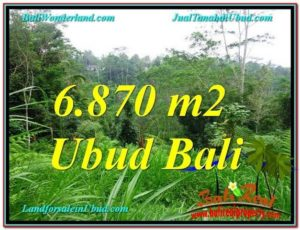 Beautiful PROPERTY LAND FOR SALE IN UBUD TJUB602