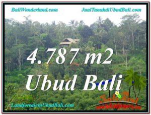 Affordable LAND SALE IN Ubud Tampak Siring BALI TJUB603