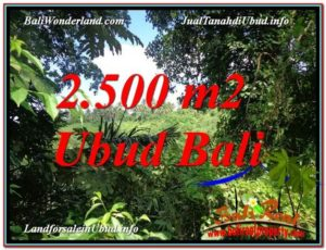 FOR SALE Exotic LAND IN Ubud Pejeng BALI TJUB605