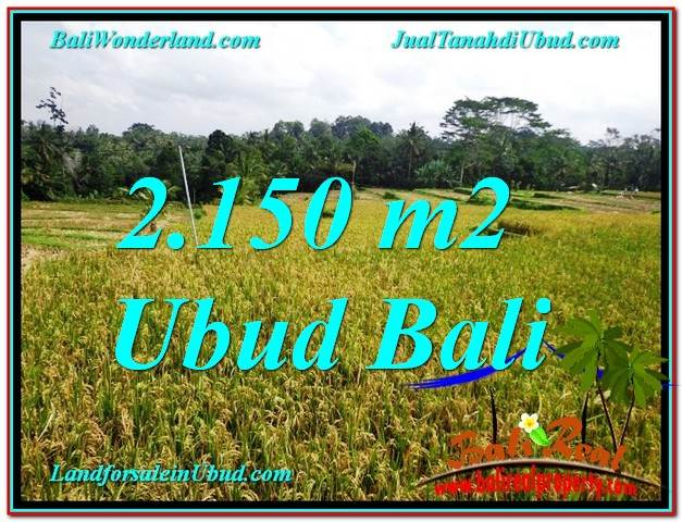 LAND IN Ubud Tegalalang FOR SALE TJUB606