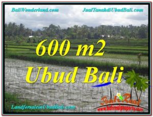 Beautiful LAND FOR SALE IN UBUD TJUB607