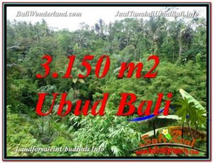 Exotic 3,150 m2 LAND SALE IN UBUD TJUB608