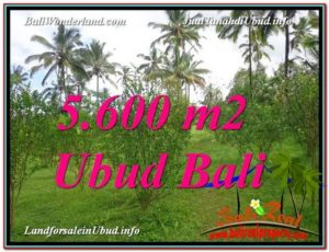 Affordable PROPERTY LAND IN UBUD FOR SALE TJUB609