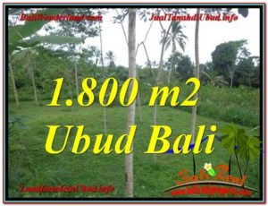 Beautiful 1,800 m2 LAND FOR SALE IN UBUD BALI TJUB610