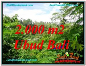 Exotic PROPERTY UBUD LAND FOR SALE TJUB611