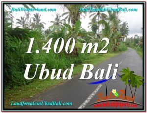 FOR SALE Affordable PROPERTY LAND IN Ubud Tegalalang BALI TJUB612
