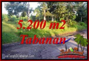FOR SALE Affordable 5,200 m2 LAND IN Tabanan Selemadeg BALI TJTB334
