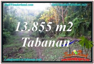 Exotic PROPERTY LAND IN TABANAN BALI FOR SALE TJTB335