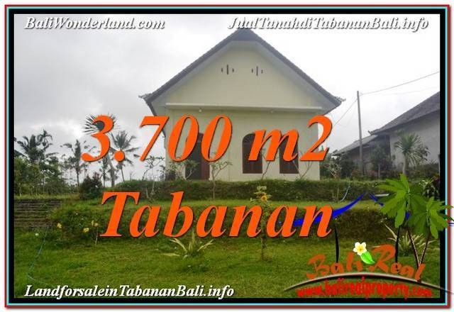 Exotic 3700 M2 LAND IN TABANAN BALI FOR SALE TJTB336