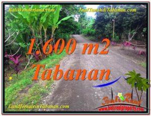 Exotic PROPERTY LAND SALE IN Tabanan Selemadeg TJTB337