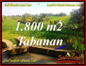 Magnificent LAND IN TABANAN FOR SALE TJTB338