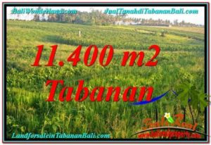 Beautiful 11,400 m2 LAND IN TABANAN FOR SALE TJTB339