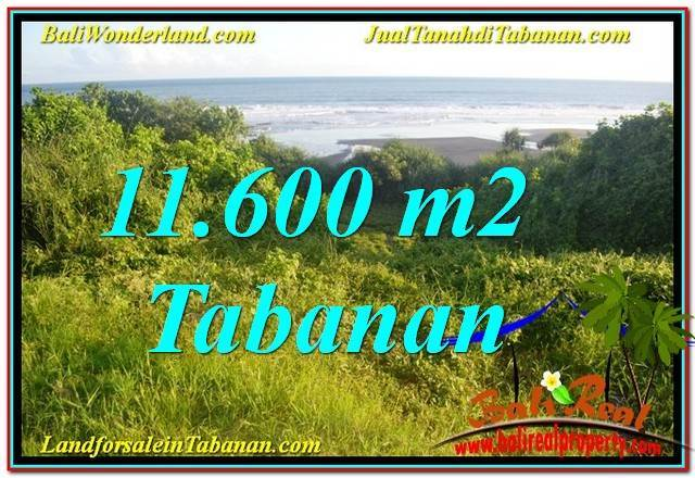 11,600 m2 LAND FOR SALE IN TABANAN TJTB340