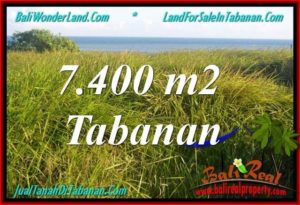 Exotic PROPERTY 7,400 m2 LAND FOR SALE IN Tabanan Selemadeg TJTB341