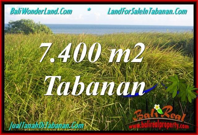 Magnificent TABANAN BALI 7,400 m2 LAND FOR SALE TJTB341