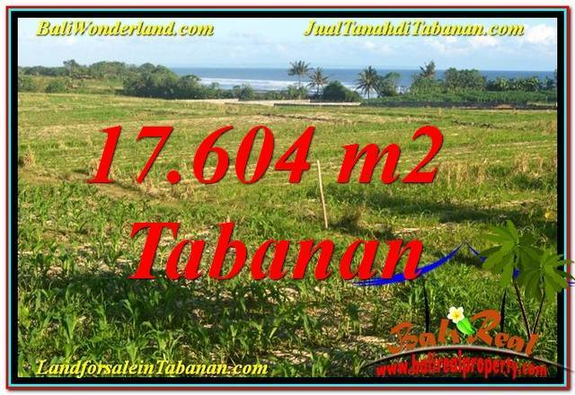 Magnificent 17,604 m2 LAND FOR SALE IN Tabanan Kerambitan TJTB342