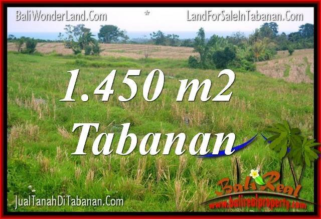 Tabanan Selemadeg LAND FOR SALE TJTB343