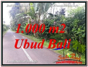 Beautiful PROPERTY 1,000 m2 LAND FOR SALE IN Ubud Tegalalang TJUB614