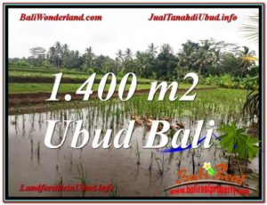 FOR SALE Beautiful PROPERTY LAND IN UBUD TJUB615