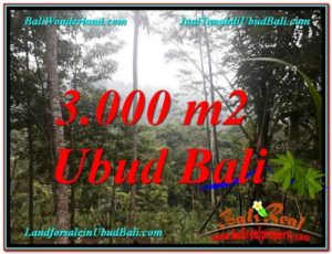 3,000 m2 LAND FOR SALE IN UBUD BALI TJUB617