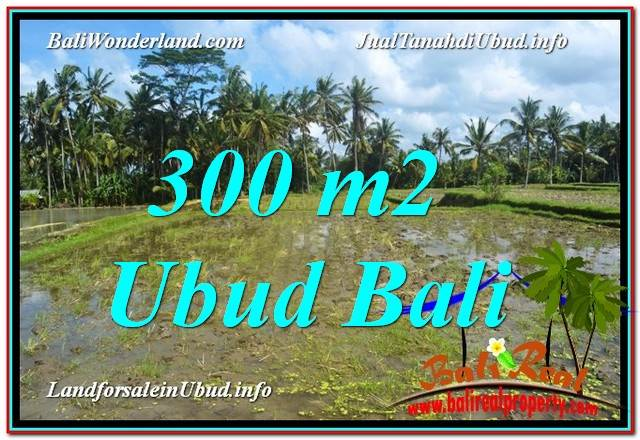 Beautiful PROPERTY Ubud Pejeng BALI 300 m2 LAND FOR SALE TJUB619