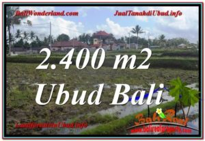 Affordable 2,400 m2 LAND SALE IN UBUD TJUB620