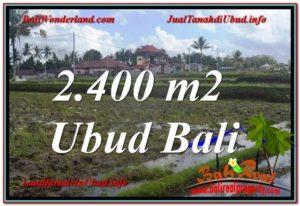 Affordable 2,400 m2 LAND SALE IN UBUD TJUB620