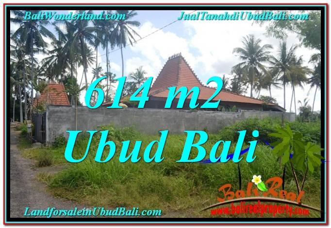 LAND FOR SALE IN Sentral Ubud BALI TJUB622
